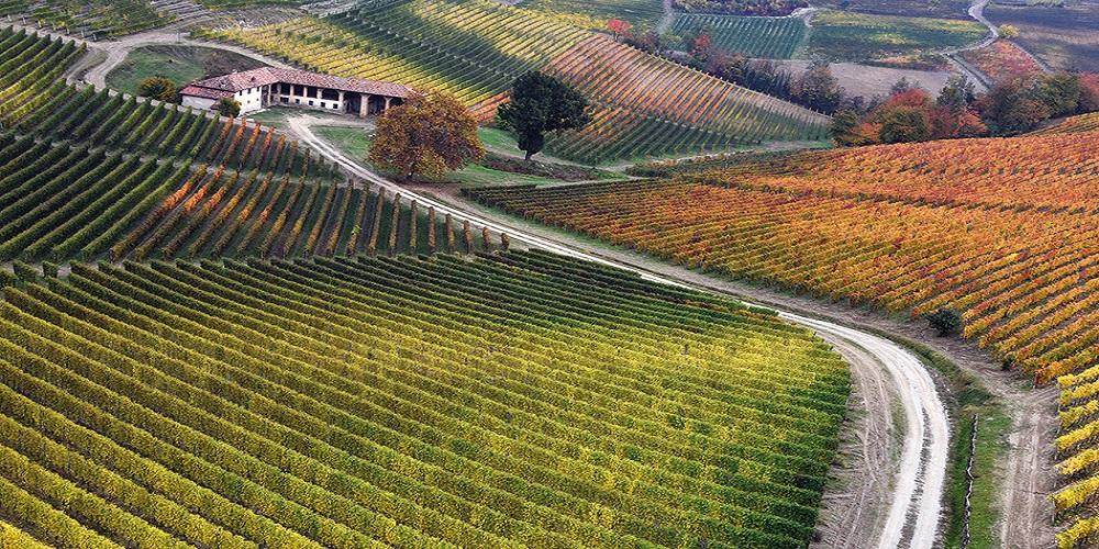 Attività nelle Langhe e Monferrato